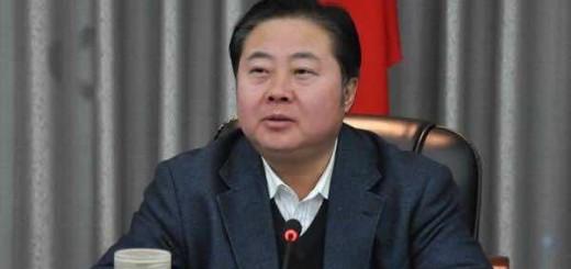 甘肃天水市委书记马世忠会见中国节能环保集团总经理王彤宙一行