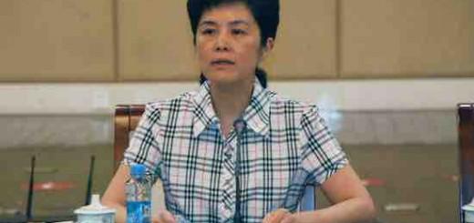 江西省副省长谢茹在2013年全省科技入园现场会上的讲话