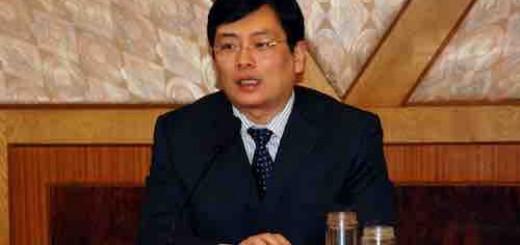 湖北省咸宁市人民政府市长丁小强:城市因合作而精彩