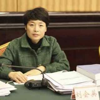 四川团省委书记刘会英:团结广大青年企业家 为富民强川奉献青春