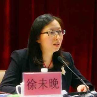 访共青团上海市委书记徐未晚:精简机构精简编制不减力量