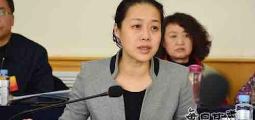 甘肃省纪委书记张晓兰率中共友好代表团访问阿尔及利亚