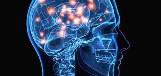 罗辑思维:失恋的大脑