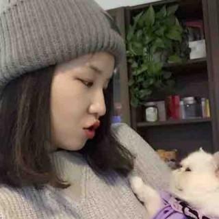曾经的百度美女产品经理叶苏,却把养猫做成了一项事业