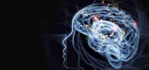 应行仁:我从哪里来?大脑方面和心理方面的研究、哲学上的认识