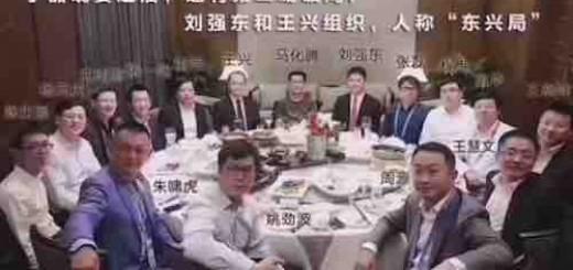 刘黎平:史记《马云乌镇冷落记》,丁磊和刘强东王兴饭局的背后