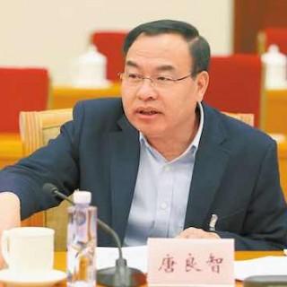 湖北武汉市长唐良智:大力发展九大产业集群 重点发展金融 文创