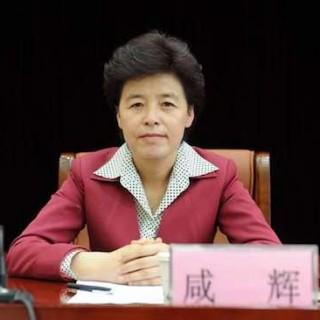 甘肃副省长咸辉调研定西市陇西县城乡居民大病保险试点工作