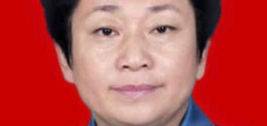 江苏省无锡市委书记黄莉新:大力发展电子商务 推动产业转型升级