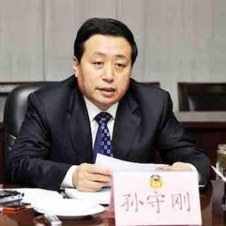 山东省宣传部长孙守刚:人才与产业发展对接 优势互补合作双赢