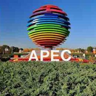 《环球人物》杨晓东:APEC,我与你同行