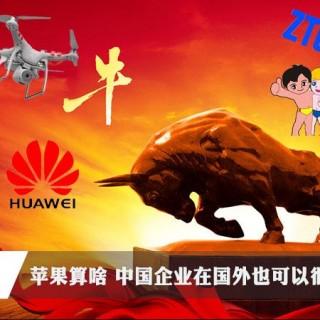 扬我国威:这些中国企业在国外也很牛