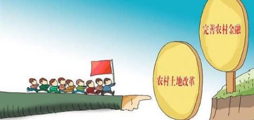 刘旷:电商、P2P、银行等模式引领农村互联网金融