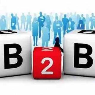 王冠雄:B2B市场格局分析及京东阿里之不同