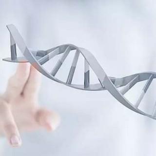 深度视角:苹果、谷歌、众安,为什么都盯上了基因?