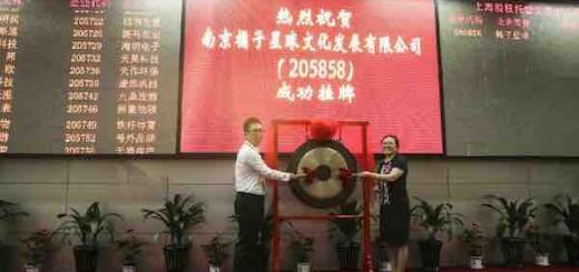 全国首家大学生文化互联网创业公司挂牌上海股交中心