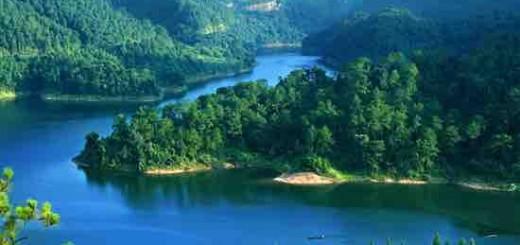 浙江省委宣传部常务副部长胡坚:绿水青山怎样才能变成金山银山