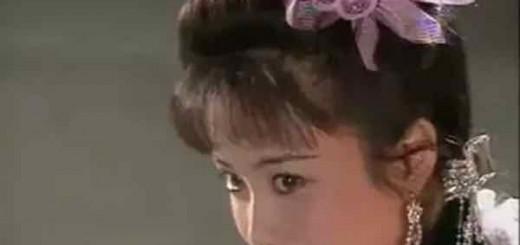 刘黎平:史记《傅艺伟传》