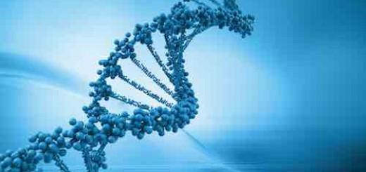 曹政:谈谈基因的黑科技