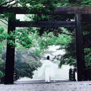 冯大辉:走马观花看日本,马桶文化的震撼及器物之美