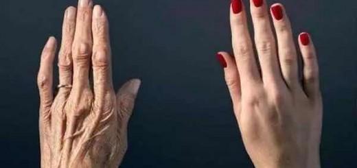 衰老不是疾病,而是热力学现象?物理和生物又较上劲了