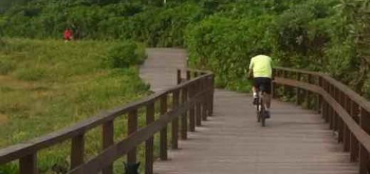 keso:自行车的记忆,希望有品位的人不开车多骑自行车