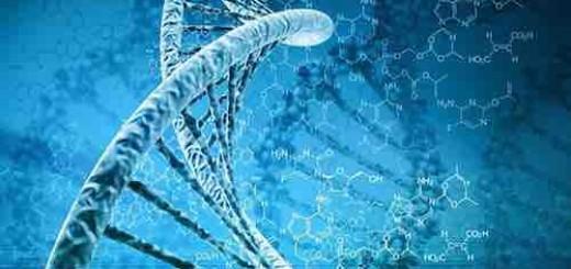 """颠覆性DNA折纸技术将引领材料界的""""文艺复兴"""""""