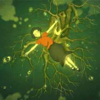 和菜头:《大鱼海棠》排雷