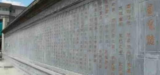 魏朝晖:甘肃省·陇南市《西和赋》