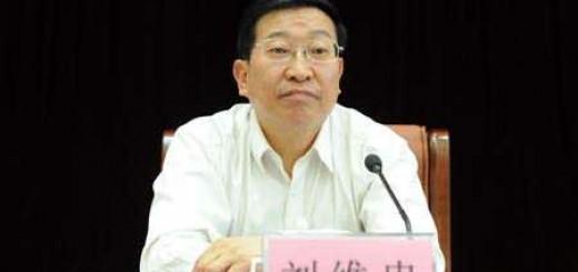刘维忠:互联网+领导力,以甘肃卫生计生委中医药发展为例