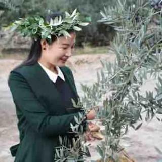 甘肃陇南祥宇橄榄油董事长刘玉红:小橄榄大产业带动乡亲共致富
