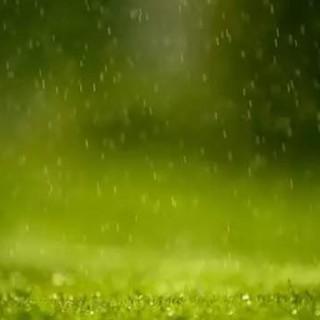 农业创新科技酝酿中:实时卫星跟踪农业水生产力、Apeel...