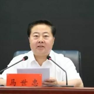 马世忠:创新完善社会治安防控体系 大力提升平安甘肃建设现代化